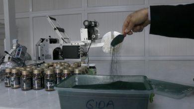 Photo of Seydikemer'de üretilen yosun 6 ülkeye ihraç ediyor