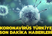 Photo of Koronavirüs kaynaklı vaka ve ölüm sayıları