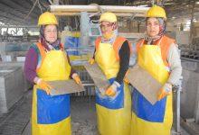 Photo of Seydikemerli Kadınlar Ekmeğini Taştan Çıkartıyor